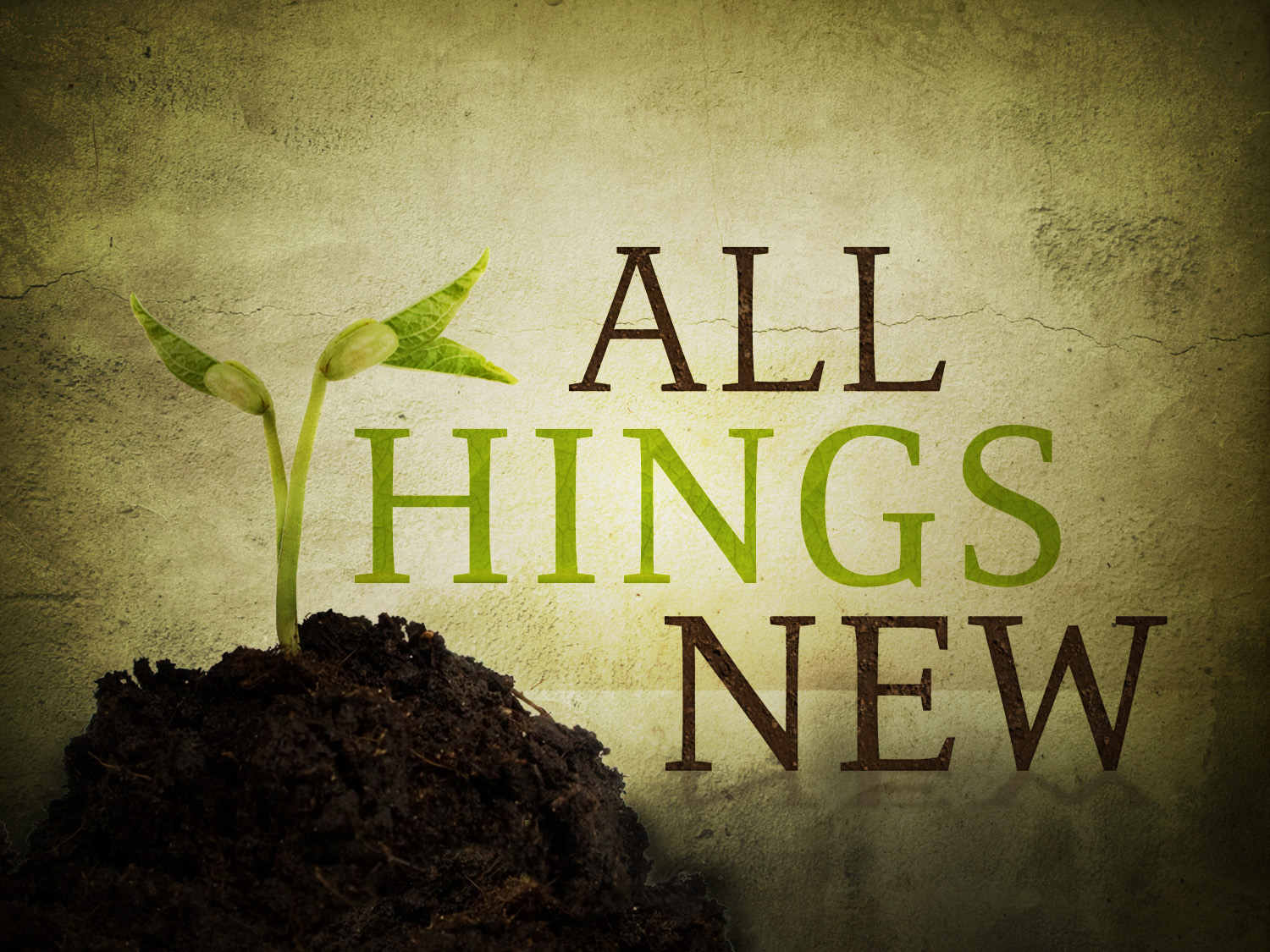 Image result for jesus makes all things new