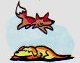 fox-and-dog