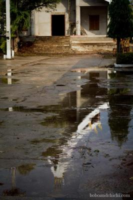 Shrine-Reflections