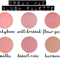 MY DREAM MAC BLUSH PALETTE