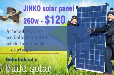 The $120 panel sale