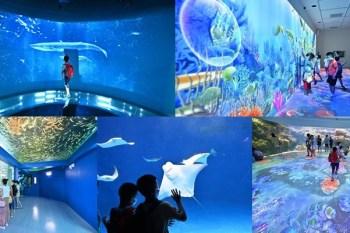 桃園Xpark水族館最新攻略》必看展區、如何購票、進場排隊注意事項、周邊停車