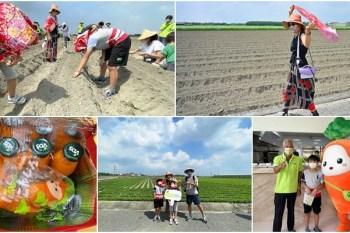 雲林VDS活力東勢   胡蘿蔔親子體驗,呼朋引伴來田裡種蘿蔔, 120天後寄到你家去
