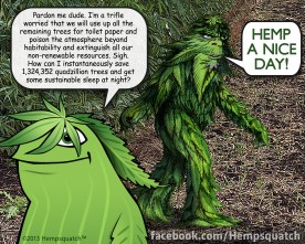 HempSquatch-Cartoon-SustainableSleep