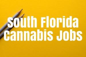 Cannabis Jobs South Florida