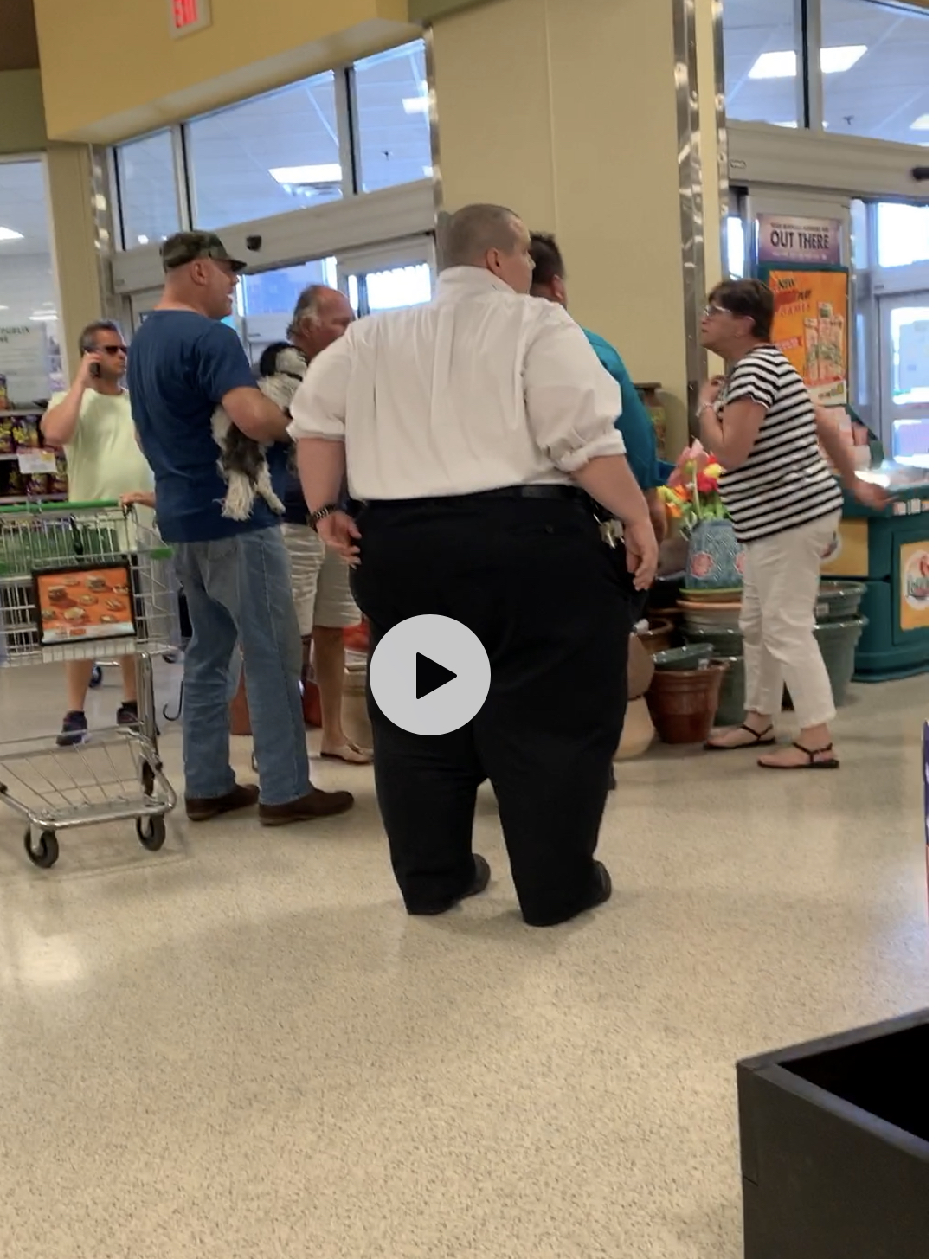 dog in publix