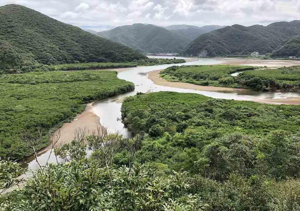 奄美大島マングローブカヌー