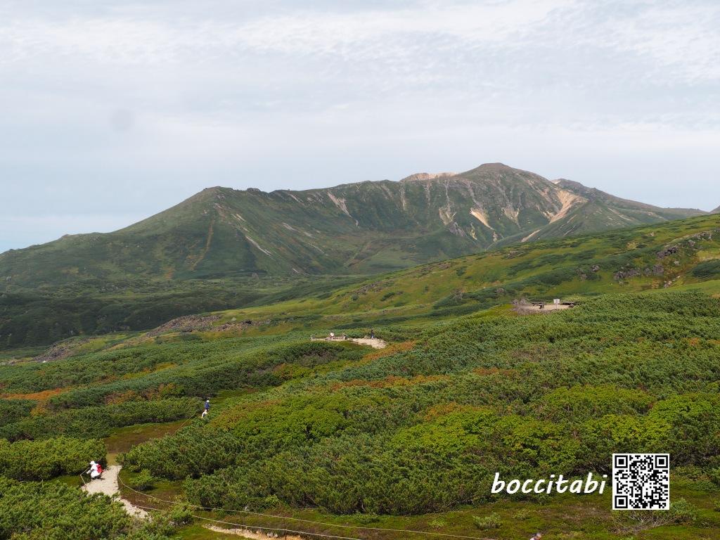 大雪山旭岳高山地帯