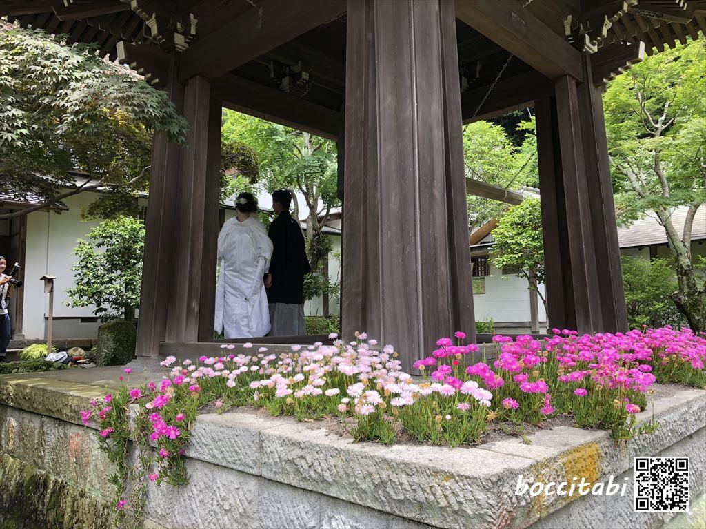 海蔵寺結婚しました写真