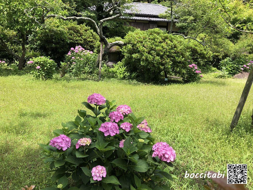 鎌倉市川喜多映画記念館庭