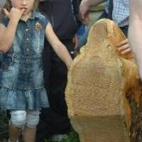 Virgin Discovered in Rathkeale -- Our Lady of the Tree Stump
