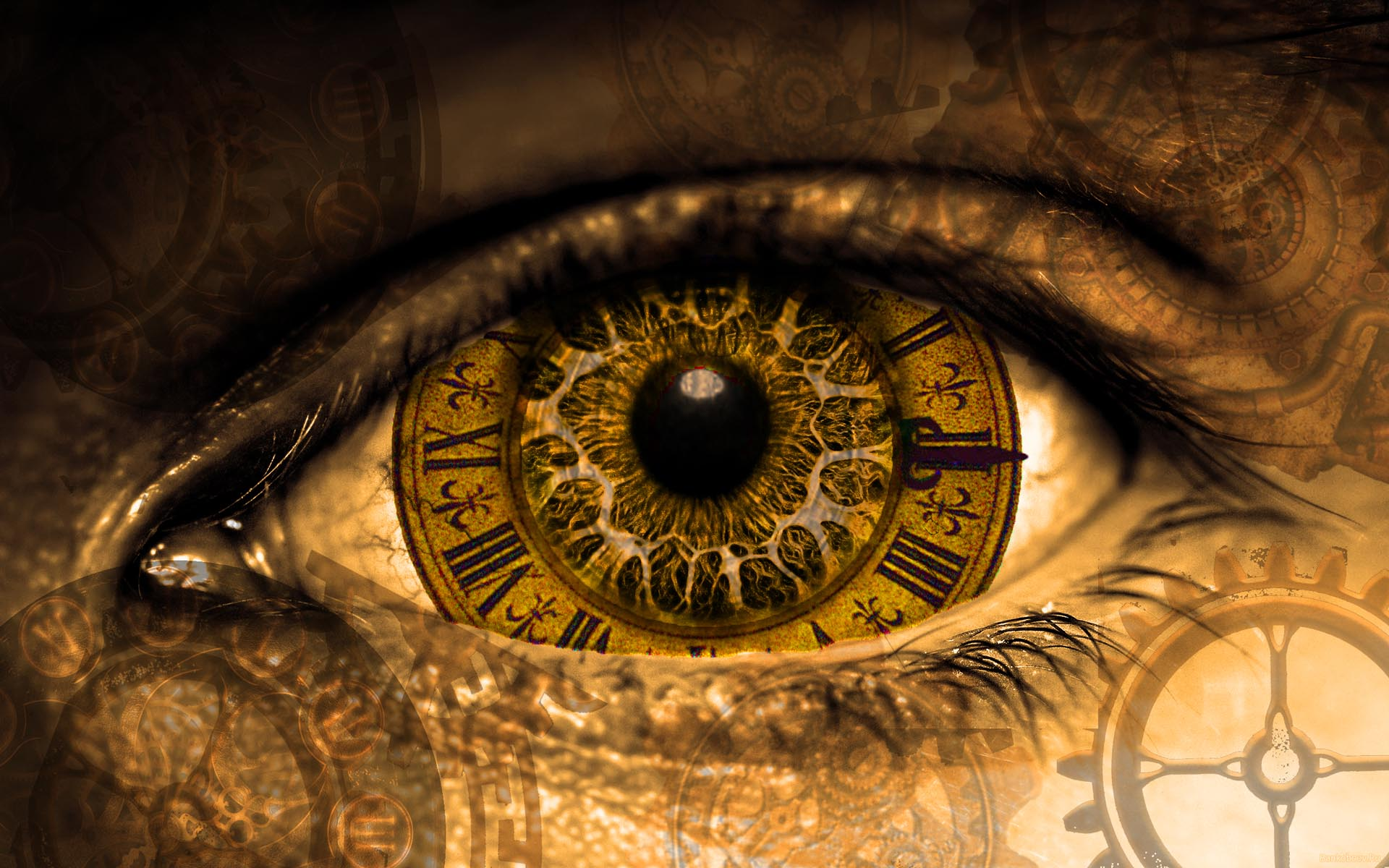 Time-Machine – join local scientist on a journey of discovery