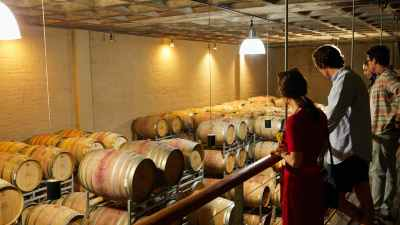 woman in red shirt standing in front of wine bottles