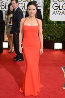 Julia Louis Dreyfus wore a gown by Narciso Rodriguez