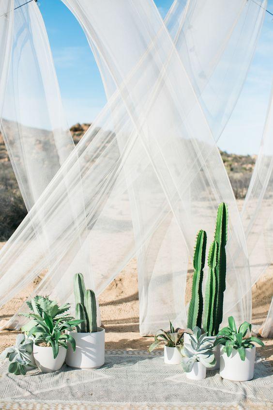 Cactus para Bodas 40 Ideas de Decoracin Fabulosas y en