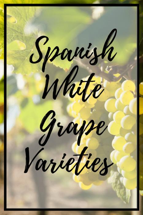 White Spanish grape varieties and food pairings Spanish wine pintrest