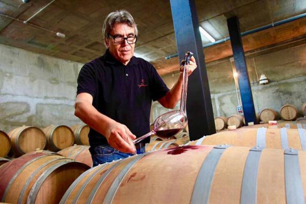 Spanish Wine Export Department at Bodega Maestrazgo. Import Spanish  Wines  Hassle Free!