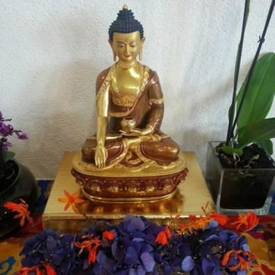 Buda-sm