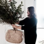10 evergreens for your Xmas wreath that will last longer