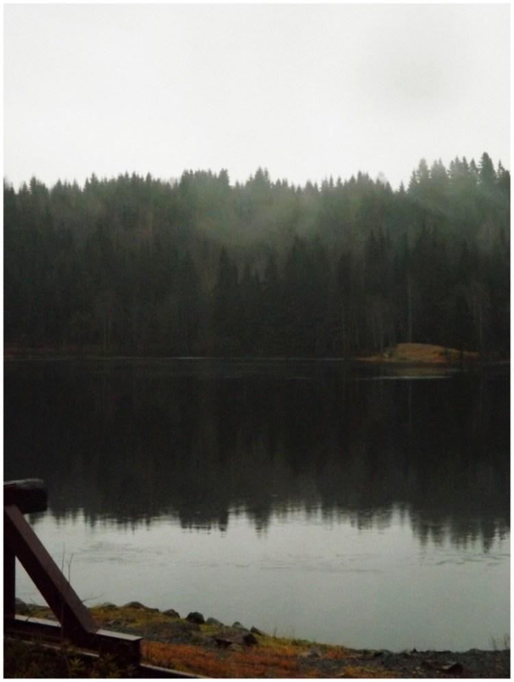 20121111-175555.jpg