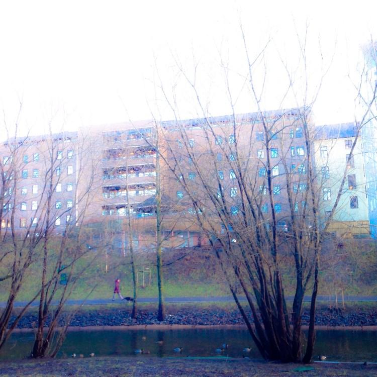 2015/01/img_2060-0.jpg