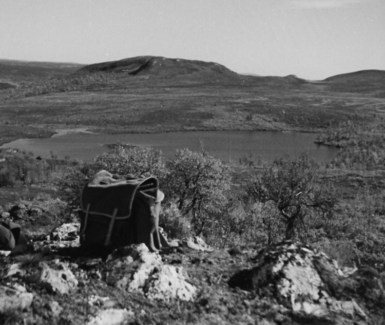 Turmotiv 1952