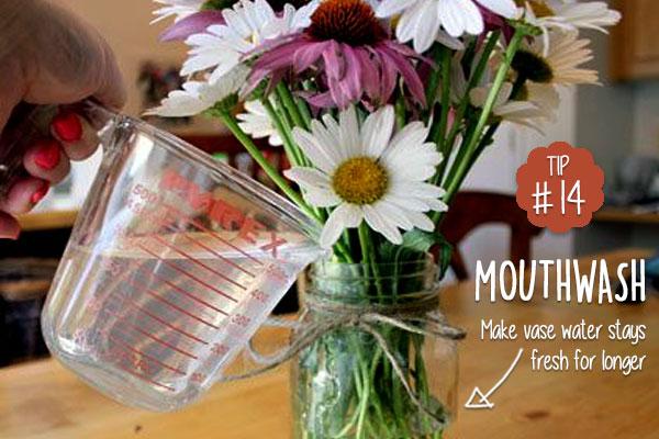 Mouthwash-keeps-cut-flower-alive-for-longer