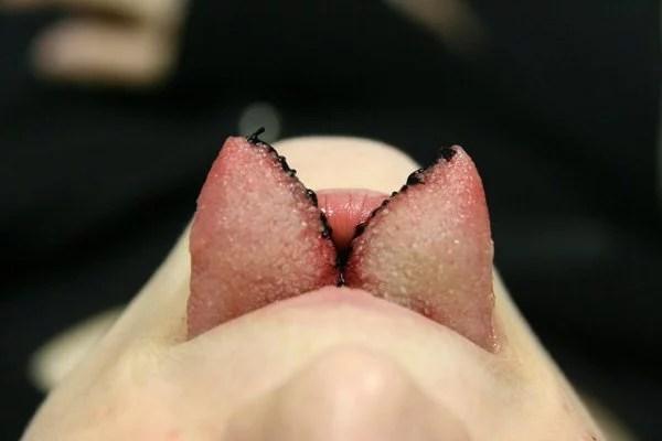 tongue-split