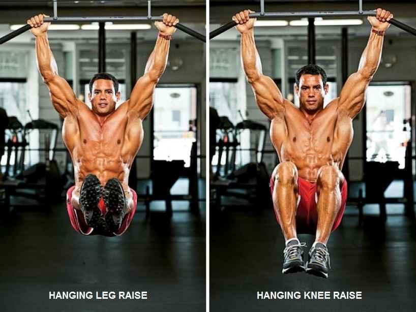 Vertical Leg Raise  Bodybuilding Wizard