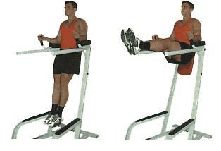 Vertical Leg Raise • Bodybuilding Wizard