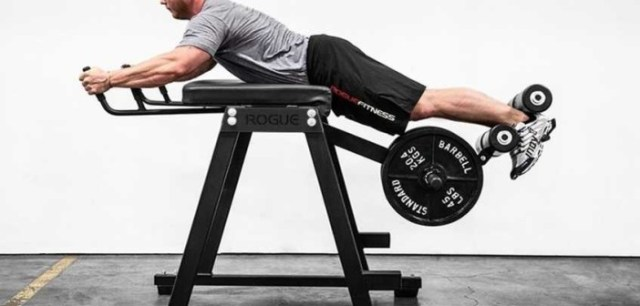 reverse-hyperextension-machine-1-2-2-702x336.jpg (702×336)