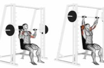 Barbell Front Raise Exercise • Bodybuilding Wizard