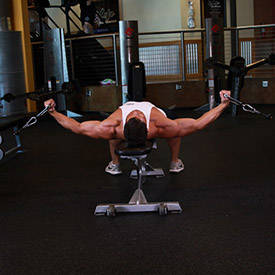 Bench Press  With Bands Exercise Guide And Video