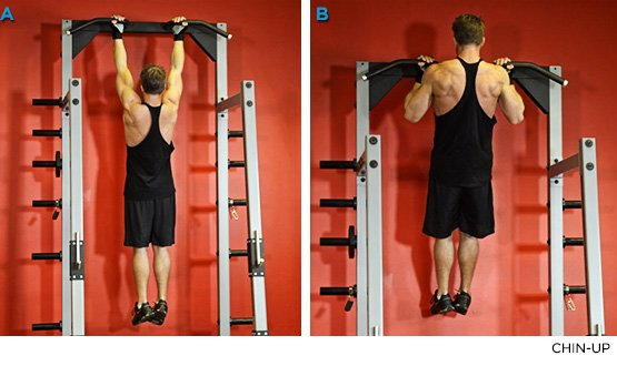 Code Of Arms: 9 Moves To Skyrocket Your Bi-And-Tri Growth
