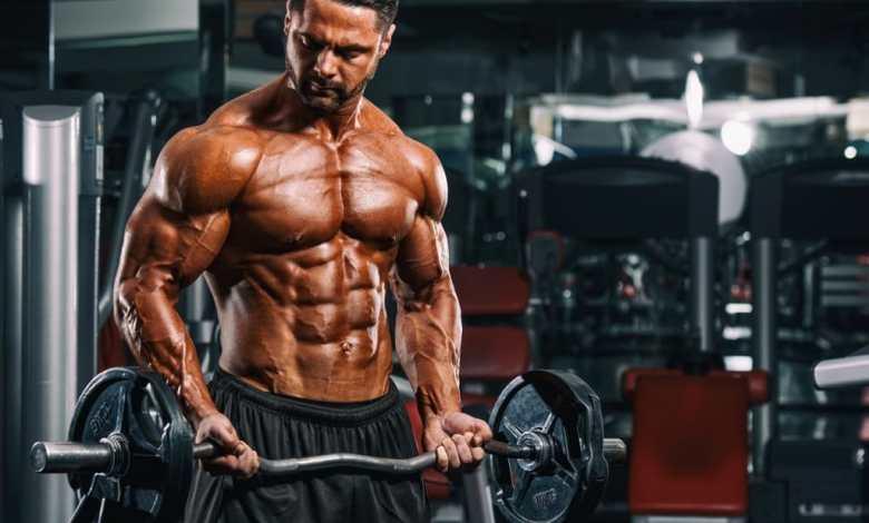 بناء العضلات للمبتدئين
