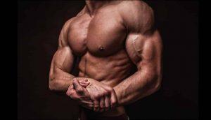 كيفية بناء عضلات الكتف؟