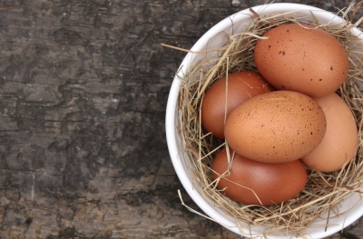 Are Eggs Good for You, the Good, the Bad and the Ugly