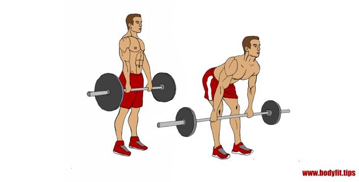 Kreuzheben mit Gestreckten Beinen - Übungebeschreibung