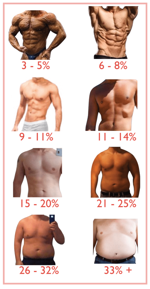 small resolution of what range is your starting body fat percentage