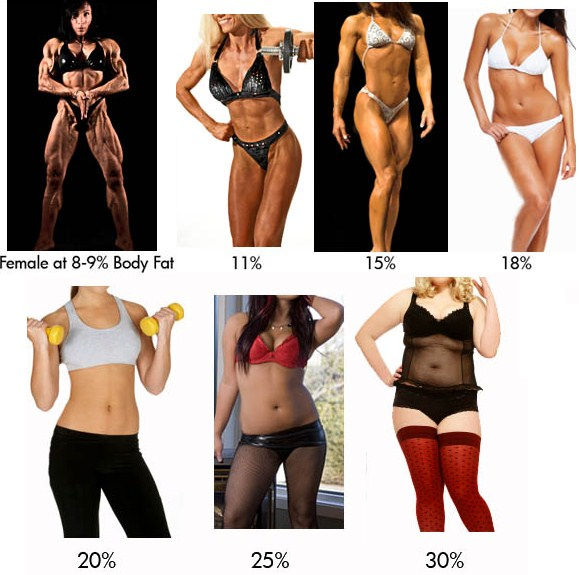 women-bodyfat-chart visual calculators
