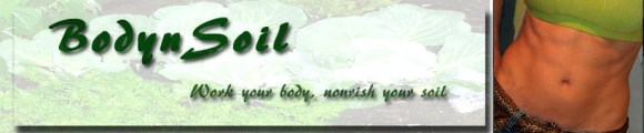 bodynsoil fitness and nutrition coaching