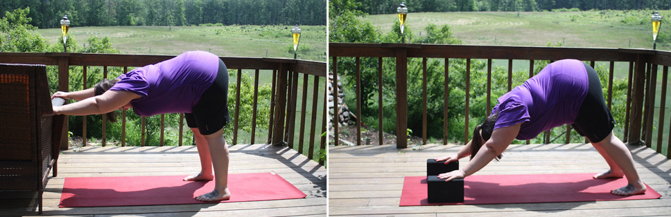 Downward facing dog: A guide for plus size yogis ...