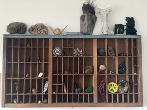 """One of my """"altars"""" - a letterpress type drawer filled with natural found objects"""