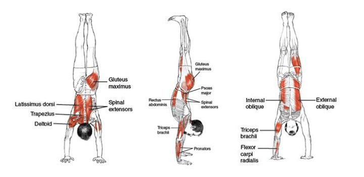 9 Reasons Why You Should Start Doing Handstand Push-Up