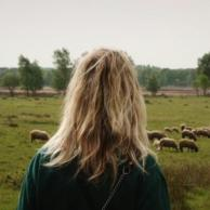 Dierenfilmfestival Wij En De Wolven