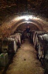 Albert Zomers, duigen, kelder met lege wijnvaten, Hongarije, maart 2019, De Werkplaats