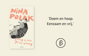 Recensie: Nina Polak – Gebrek is een groot woord