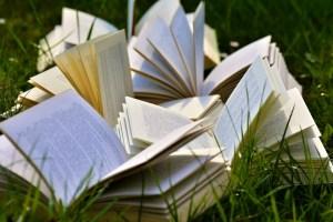 schrijf jouw boek