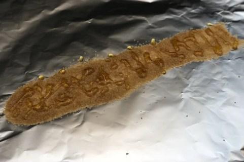 Rå Rørsukker og Honning på Folien inden Kalveribs skal pakkes