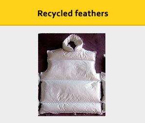 Recycled feathers